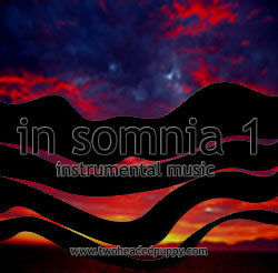 cool album cover for in somnia